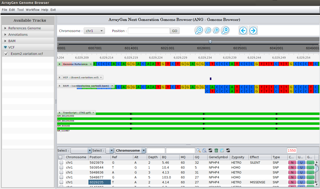 ArrayGen Genome Browser